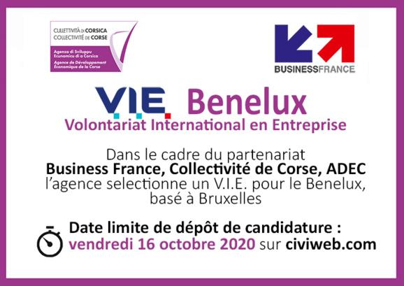 OFFRE DE MISSION 🌍[V.I.E Benelux] basé à Bruxelles ⏰Candidatez jusqu'au 16 Octobre