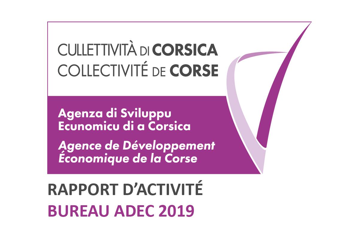 📈RAPPORT D'ACTIVITÉ [BUREAU ADEC 2019]