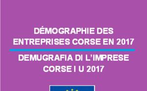 Démographie des entreprises corses en 2017