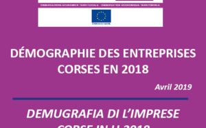 Démographie des entreprises corses en 2018