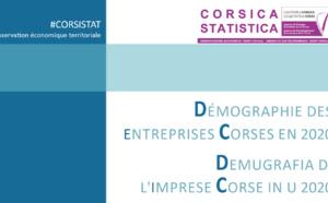 Démographie des entreprises corses en 2020