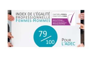 📈INDEX DE L'ÉGALITÉ PROFESSIONNELLE FEMMES-HOMMES : 79/100 POUR L'ADEC